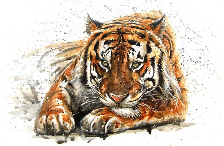 год черного водяного тигра