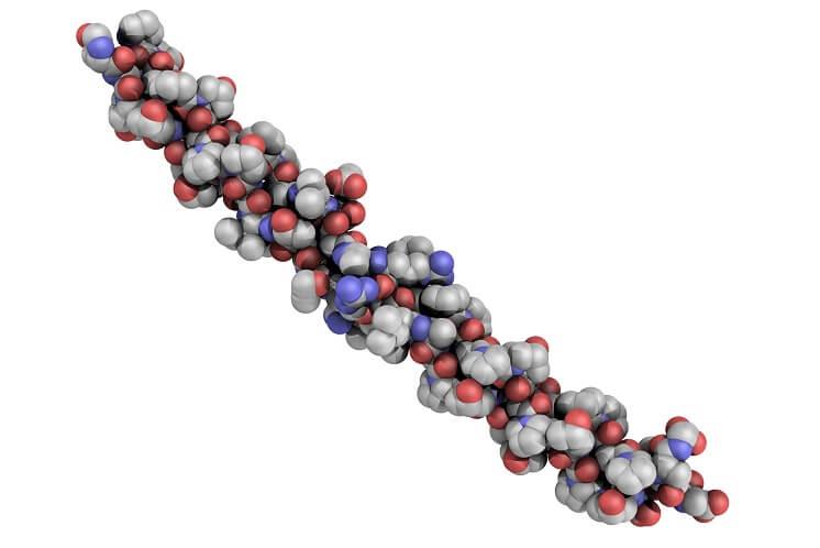 химическая структура белка коллагеновой модели